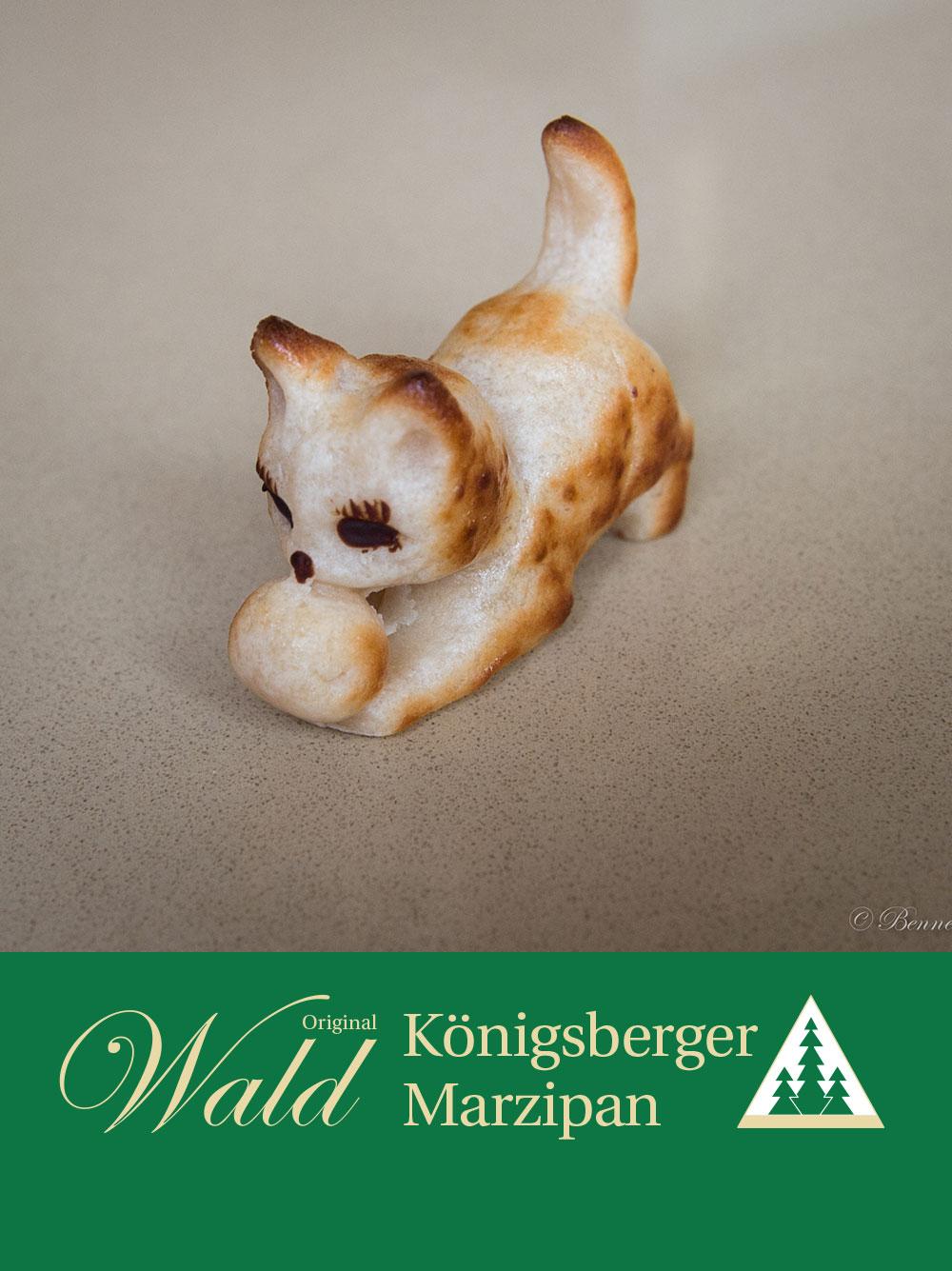 Original Wald Königsberger Kätzchen geflämmt