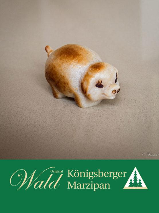 Original Wald Königsberger Glücksschweinchen geflämmt