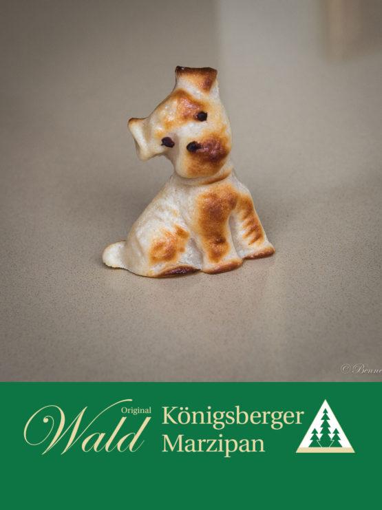 Original Wald Königsberger Strolchi geflämmt